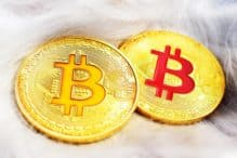 Bitcoin Cash invester