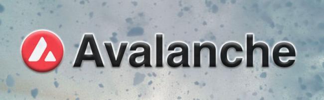 avalanche kurs